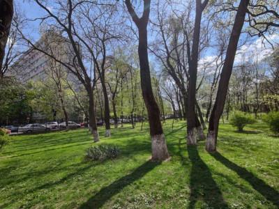 Vanzare apartament 3camere Parc Bazilescu